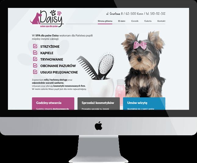 Daisy - Spa dla psów Konin